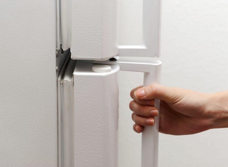karet pintu kulkas